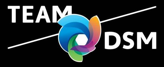 team-dsm.png